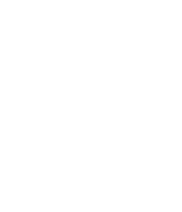 BlueFogCommunications-Logo-1Color-White